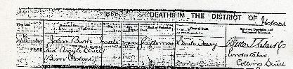 Preview medium death certificate john bush 16 sept 1888