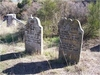 Thumbnail headstones of elanour   thomas guy circa 2008