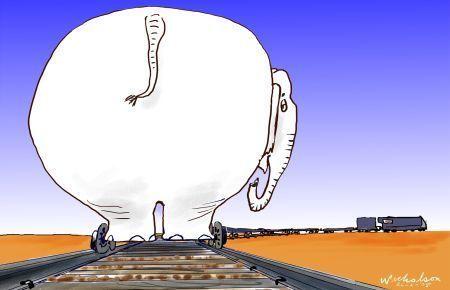 Medium darwin alice railway nicholson