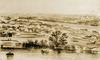 Thumbnail kangaroo point brisbane 1860s