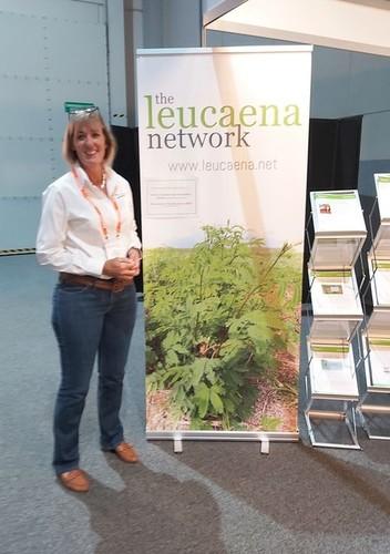 Medium lucena network darwin may 2021